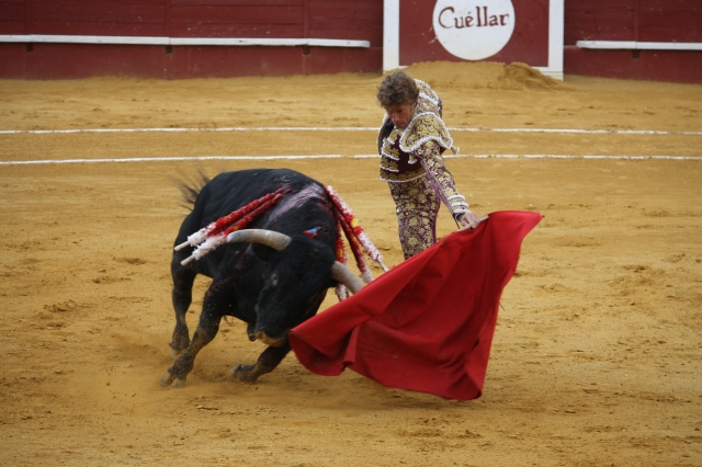 A bull of 'Los Bayones' with matador Manuel Escribano, Sep 2nd, '15, Cuéllar, Castile y León, Spain (Photo: Alexander Fiske-Harrison)
