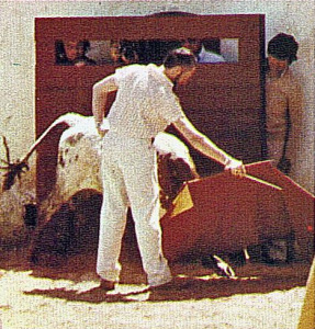 Rolf von Essen, the most senior member of the Pamplona 'cuadrilla' - he was introduced to Ernest Hemingway there by Orson Welles during the San Fermín of 1959 writes to tell me that the photo of Noel bullfighting above was taken on April 26th, 1979 at the ranch of Marqués de Ruchena near Seville, who are our friends the Valdenebro family. This is Rolf that day - a superior torero práctico who used the name 'Er Niño de La Caseta' - and you can make out Noel behind the burladero.