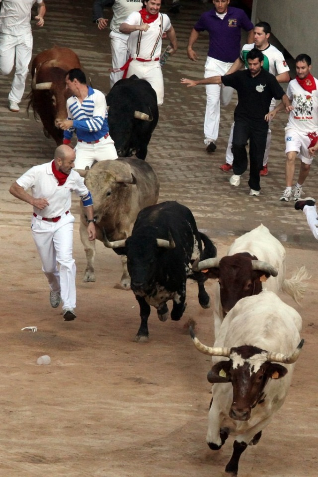 Julen Madina in the traditional red and white (with blue elbow support) leads the bulls into the ring in Pamplona