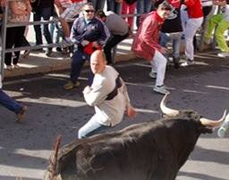 The author in a red jacket in streets of Cuéllar as the bull selects him as a target (Photo from the private collection of the author)