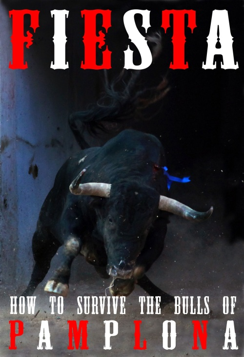 The bull enters the ring by Jim Hollander / EPA. Cover of Fiesta: How To Survive The Bulls Of Pamplona And Beyond