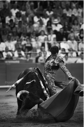 José Tomás by Carlos Cazalis from his forthcoming book Sangre de Reyes, 'Blood Of
